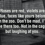 Creative Roses Are Red Violets Are Blue Funny Pics852