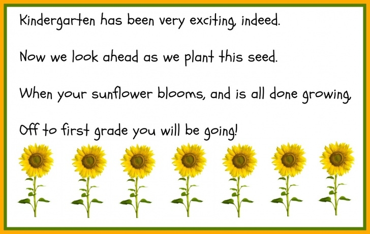 Creative Sunflower Love Poem Photo502