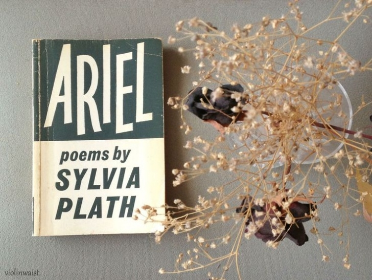 Creative Sylvia Plath Tulips Poem Image775