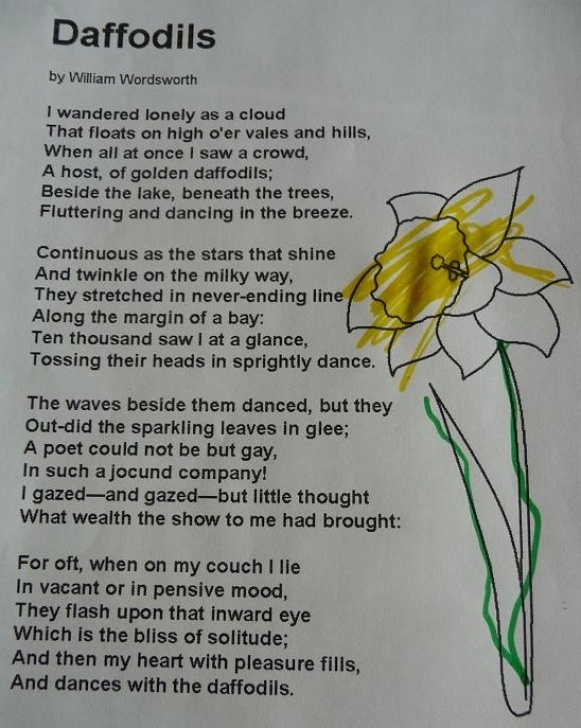 Creative The Daffodil By William Wordsworth Pics471