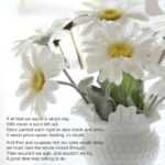 Creative The Daisy Poem Pic398