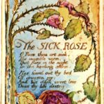 Famous Famous Rose Poems Picture826