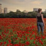 Famous Flanders Field The Poppies Grow Photo478