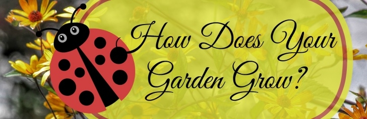 Famous Grow Your Own Garden Poem Photo929