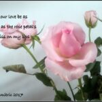 Famous I Am Like A Flower Poem Picture778