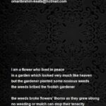Famous If Flowers Grow In Heaven Poem Picture741