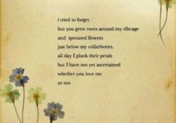Famous Poem About Love And Flowers Picture921