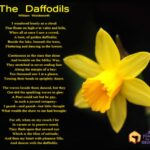Famous Poems About Yellow Flowers Picture686