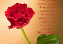 Famous Rose Day Poem Picture544