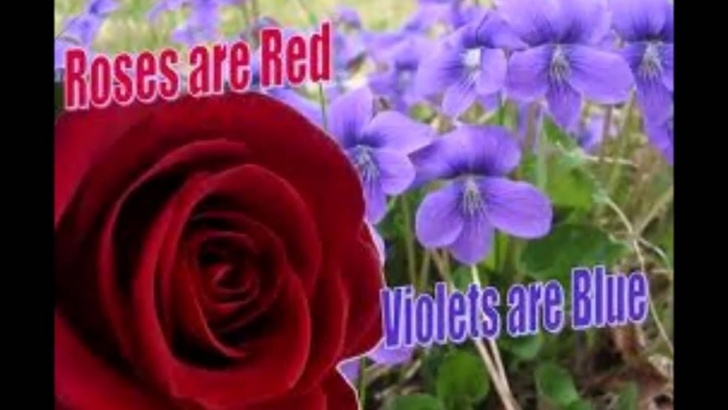 Famous Roses Are Red Violets Are Blue And Pic509