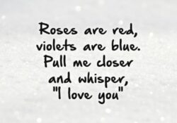 Famous Roses Are Red Violets Are Blue Will You Be My Valentine Image899