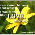 Famous Short Poems About Flowers In Malayalam Pics850