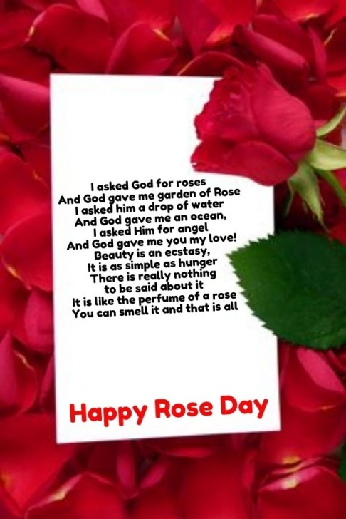 Famous The Red Flower Poem Image643