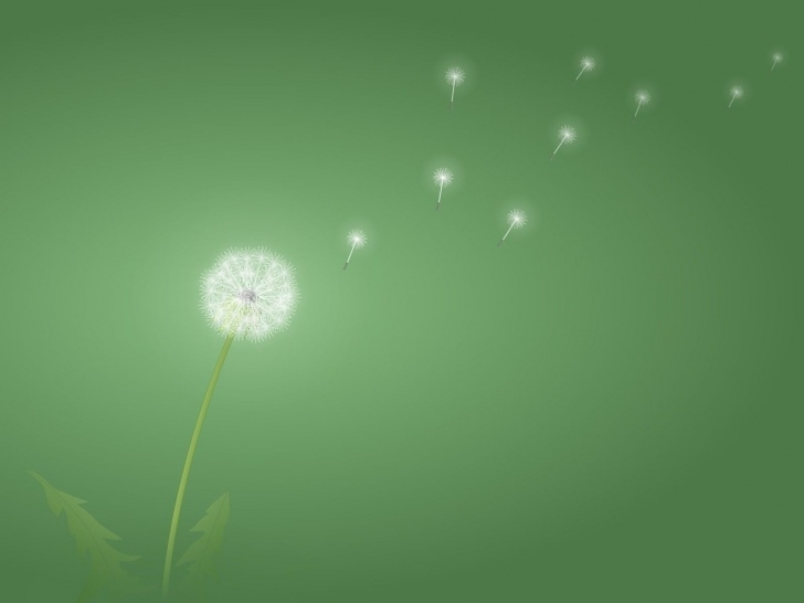 Fantastic Dandelion Wish Poem Picture716