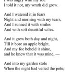 Fantastic Famous Poem About A Tree Picture719