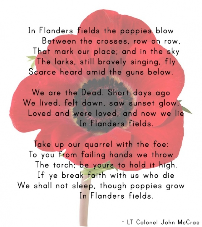 Fantastic Famous Poems About Poppies Image711