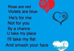Fantastic Funny Romantic Roses Are Red Poems Pic968