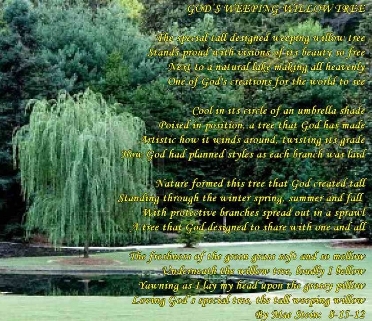 Fantastic God'S Flower Garden Poem Pics648