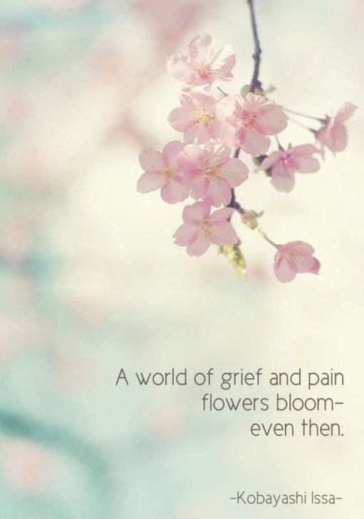 Fantastic Haiku For Flowers Picture492