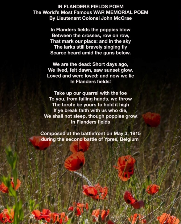 Fantastic I Am The Flower In The Field Poem Image903