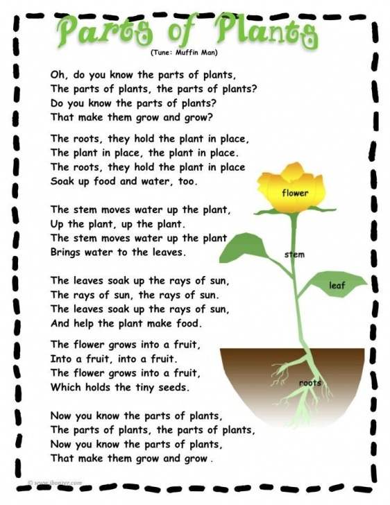 Fantastic Little Flower Poem Image419