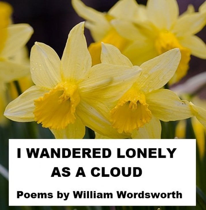 Fantastic Poem On Daffodils In English Pics081