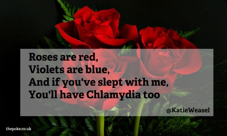 Fantastic Roses Are Red Love Poem Pics193