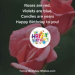 Fantastic Roses Are Red Violets Are Blue Examples Pics003