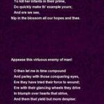 Fantastic Small Poem On Flowers Image831