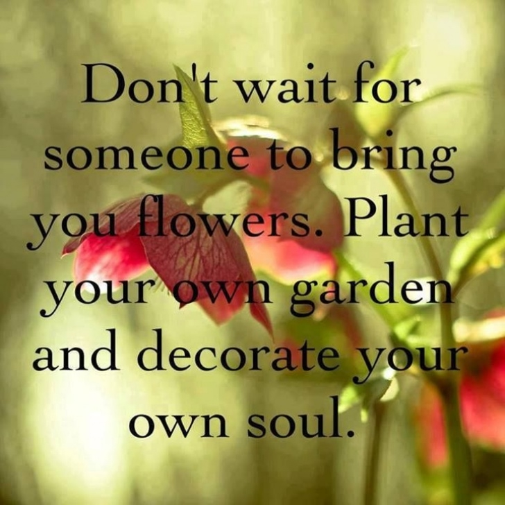 Fantastic So You Plant Your Own Garden And Decorate Your Own Soul Image431