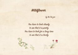 Fantastic The Poetry Of Flowers Photo415