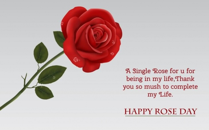 Gorgeous A Single Rose Poem Pic644