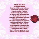 Gorgeous Flowers Are Beautiful Poem Picture563