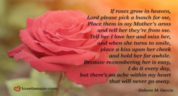 Gorgeous Flowers From Heaven Poem Pic509