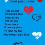 Gorgeous Funny Valentines Day Roses Are Red Poems Photo216