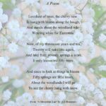 Gorgeous One Tree Poem Image871
