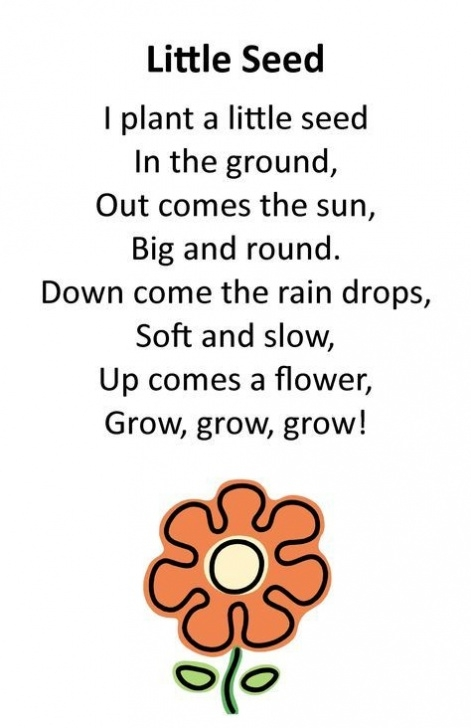 Gorgeous Poem On Flowers For Class 1 Photo422