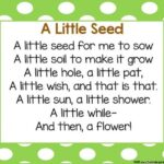 Gorgeous Poem The Plant Image182