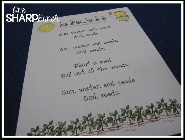 Gorgeous Poems About Herbs Picture807