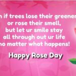 Gorgeous Poems About Roses Pics882