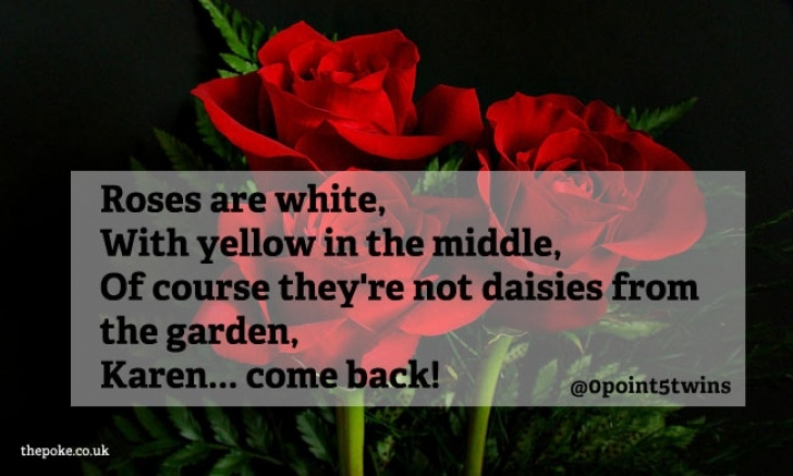 Gorgeous Roses Are Red Love Poem Pic789