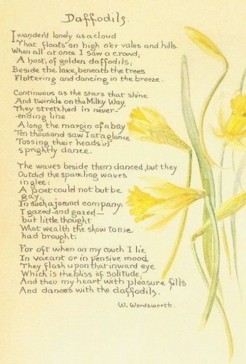 Gorgeous The Daffodil By William Wordsworth Picture401