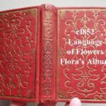 Gorgeous The Language And Poetry Of Flowers Pic695