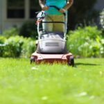 Gorgeous The Mower Against Gardens Image837