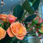 Gorgeous Tuft Of Flowers Poem Pic213