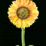 Gorgeous You Are My Sunflower Poem Image257