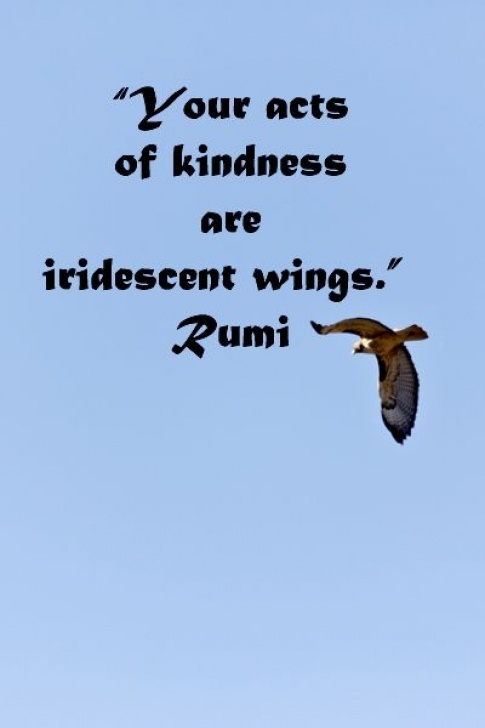 Great A Garden Beyond Paradise The Mystical Poetry Of Rumi Photo350
