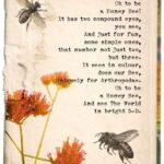 Great A Girl'S Garden Poem Image969