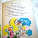 Great Bluebell Fairy Poem Pics463