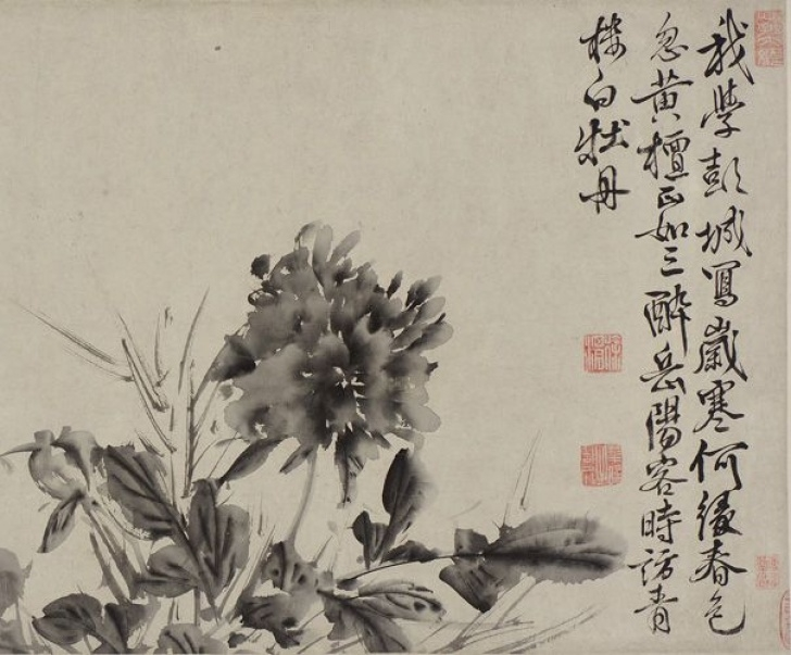 Great Chinese Poems About Flowers Pics697